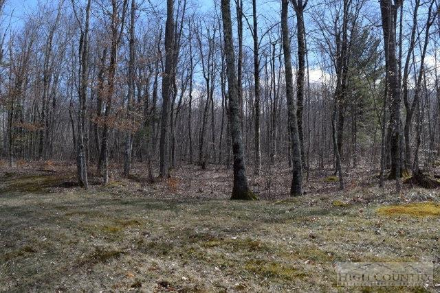 Lot 52 Linville River Lane, Linville, NC 28646 (MLS #190172) :: Keller Williams Realty - Exurbia Real Estate Group