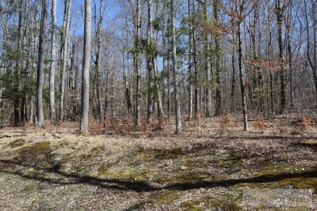 Lot 51 Linville River Lane, Linville, NC 28646 (MLS #190173) :: Keller Williams Realty - Exurbia Real Estate Group