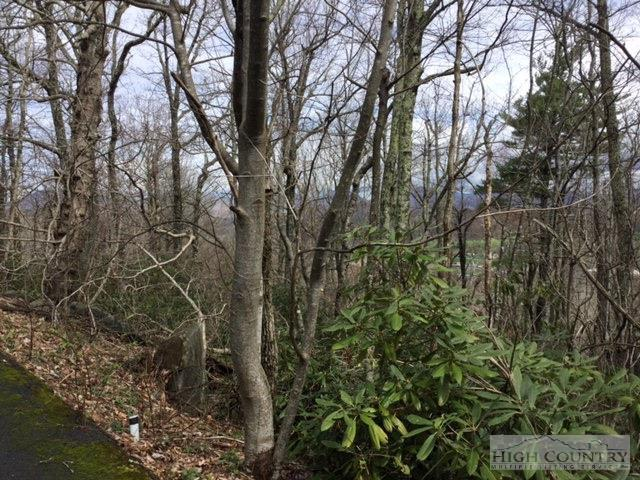 Lot 28 Milton Brown Heirs Road, Boone, NC 28607 (MLS #190868) :: Keller Williams Realty - Exurbia Real Estate Group