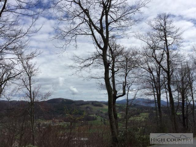 Lot 5 Oak Leaf Trail, Boone, NC 28607 (MLS #190869) :: Keller Williams Realty - Exurbia Real Estate Group