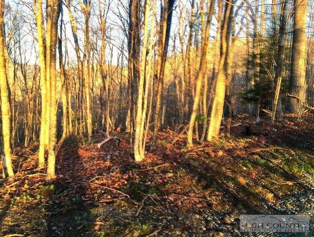 004 Tyneloch Drive, Banner Elk, NC 28604 (MLS #191254) :: Keller Williams Realty - Exurbia Real Estate Group