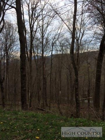 Tbd Shelter Rock Circle, Sugar Mountain, NC 28604 (MLS #191275) :: RE/MAX Impact Realty