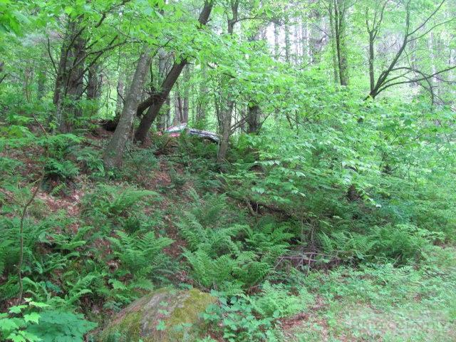 Lot #852 Pritchard Drive, West Jefferson, NC 28694 (MLS #191682) :: Keller Williams Realty - Exurbia Real Estate Group