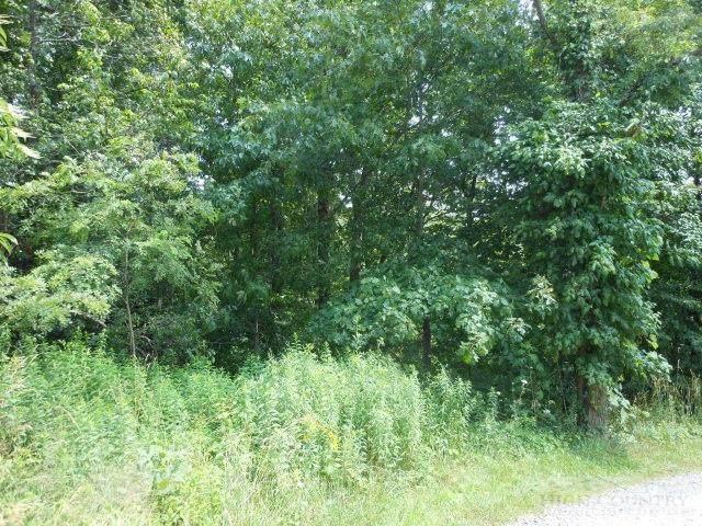TBD Monarch Lane, Boone, NC 28607 (MLS #192852) :: RE/MAX Impact Realty