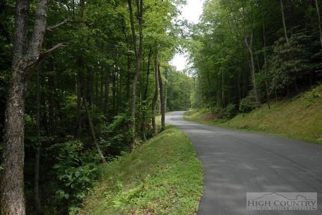 Lot 13 Sonterra Drive, Lansing, NC 28643 (MLS #193128) :: Keller Williams Realty - Exurbia Real Estate Group