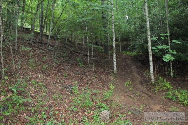 Tbd Lost Trail, West Jefferson, NC 28694 (MLS #194316) :: Keller Williams Realty - Exurbia Real Estate Group