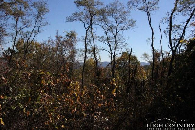 Lot 118 Point Lookout Lane, Independence, VA 24348 (MLS #194740) :: Keller Williams Realty - Exurbia Real Estate Group