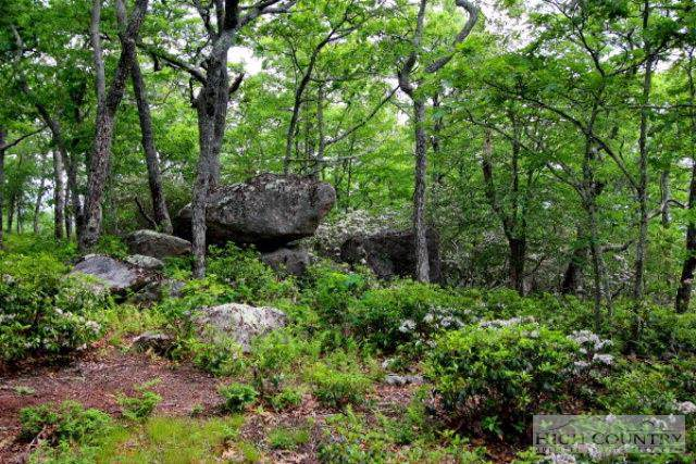 Lot P1&2 Point Lookout Lane, Independence, VA 24348 (MLS #195307) :: Keller Williams Realty - Exurbia Real Estate Group
