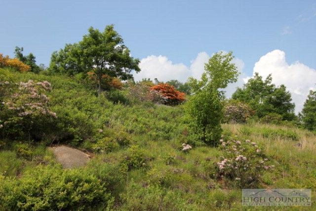 Lot P 12 Point Lookout Lane, Independence, VA 24348 (MLS #195314) :: Keller Williams Realty - Exurbia Real Estate Group