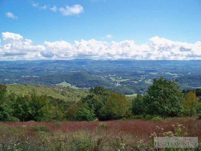 Lot P-18 Point Lookout Lane, Independence, VA 24348 (MLS #195373) :: Keller Williams Realty - Exurbia Real Estate Group