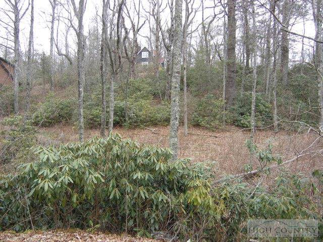 Lot 2 Heritage Lane, Blowing Rock, NC 28605 (MLS #195476) :: Keller Williams Realty - Exurbia Real Estate Group