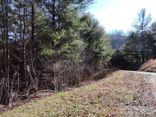 Lot 16 River Rock Road, Warrensville, NC 28693 (MLS #195584) :: Keller Williams Realty - Exurbia Real Estate Group