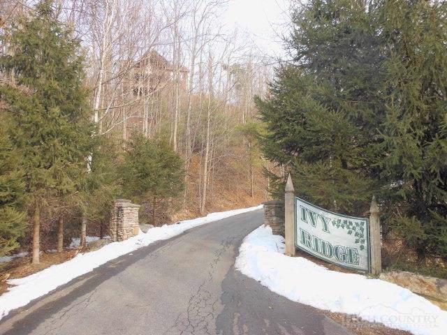 Lot 11 Ivy Ridge Road, Deep Gap, NC 28618 (#195754) :: Mossy Oak Properties Land and Luxury