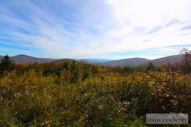 Lot 6 Woodland Springs Lane, Boone, NC 28607 (MLS #195775) :: Keller Williams Realty - Exurbia Real Estate Group
