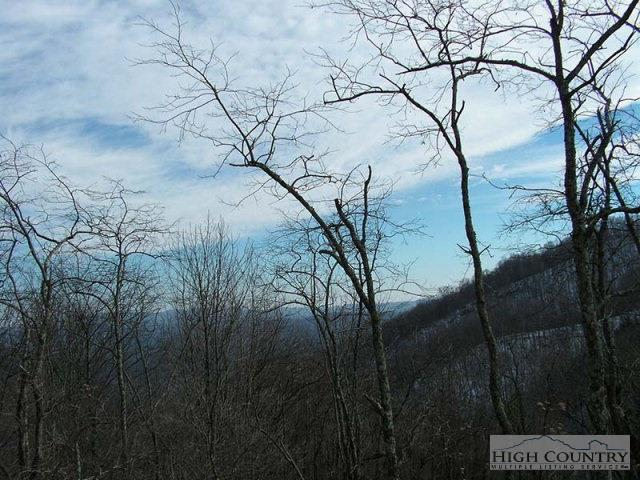 Lot 1 Georges Gap Road, Sugar Grove, NC 28679 (MLS #195986) :: Keller Williams Realty - Exurbia Real Estate Group
