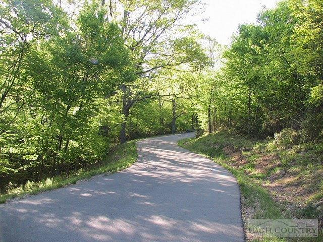 Lot T-2 Point Lookout Lane, Independence, VA 24348 (MLS #196120) :: Keller Williams Realty - Exurbia Real Estate Group