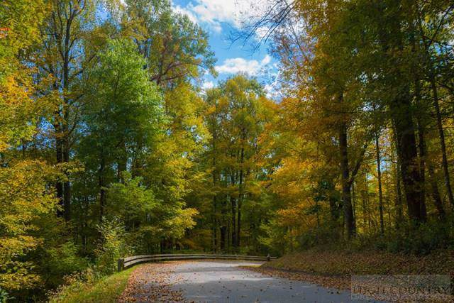 Lot 60 Fire Pink Road, Boone, NC 28607 (MLS #196173) :: RE/MAX Impact Realty