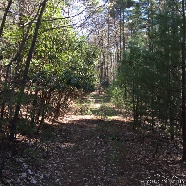 Lot 390-391 Cardinal Drive, West Jefferson, NC 28694 (MLS #202473) :: Keller Williams Realty - Exurbia Real Estate Group
