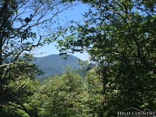 Lot 2 Crown Point Road, West Jefferson, NC 28694 (MLS #203001) :: Keller Williams Realty - Exurbia Real Estate Group