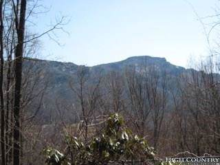 Lot 29R Farm Lane, Banner Elk, NC 28604 (MLS #203522) :: Keller Williams Realty - Exurbia Real Estate Group