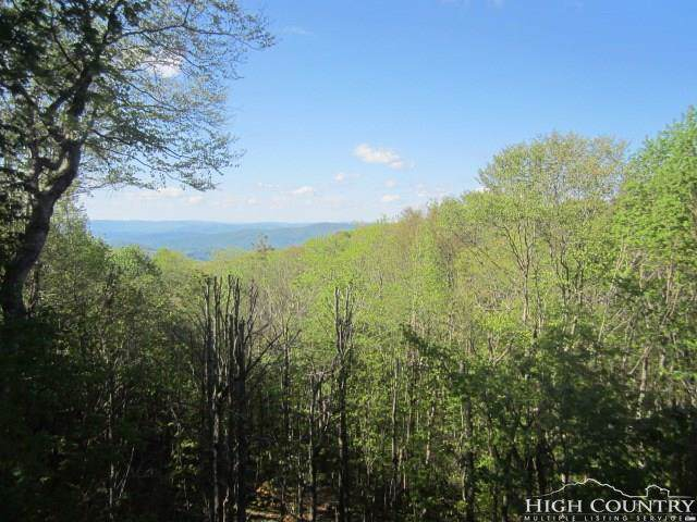112 Hawthorne Road, Beech Mountain, NC 28604 (MLS #204365) :: RE/MAX Impact Realty
