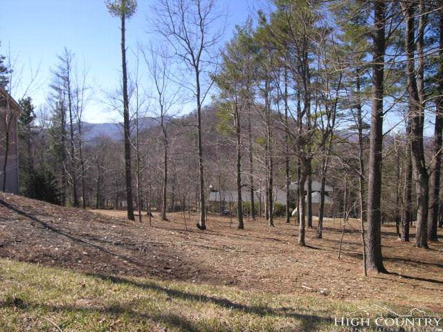 Tbd Holly Lane, Blowing Rock, NC 28605 (MLS #204981) :: Keller Williams Realty - Exurbia Real Estate Group