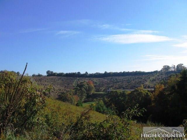 75 Green Meadows Drive, Todd, NC 28684 (MLS #205103) :: Keller Williams Realty - Exurbia Real Estate Group