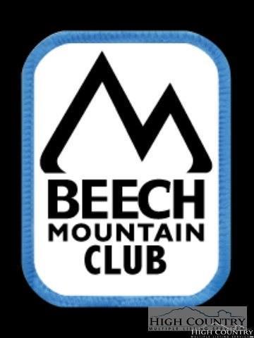100 Chipmunk Lane, Beech Mountain, NC 28604 (MLS #205121) :: Keller Williams Realty - Exurbia Real Estate Group