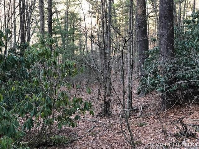 Lot 12 Lost Trail, West Jefferson, NC 28694 (MLS #205469) :: Keller Williams Realty - Exurbia Real Estate Group