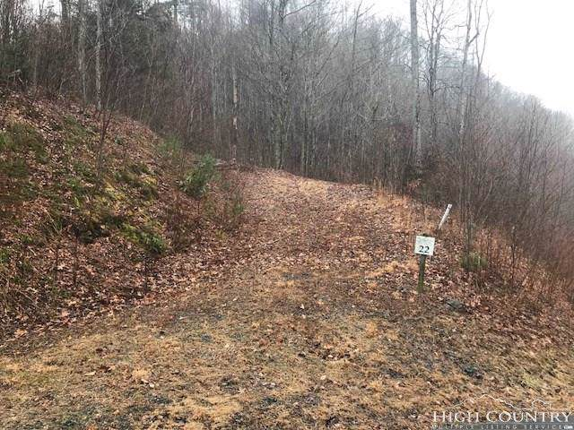 TBD Big Rock Drive, Elk Park, NC 28622 (MLS #205507) :: RE/MAX Impact Realty