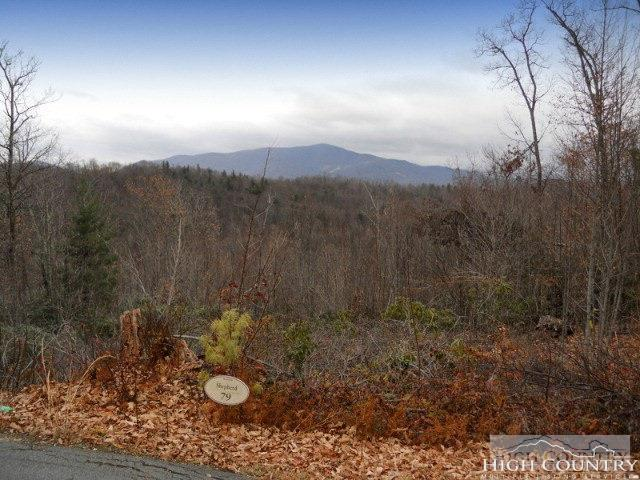 Lot 79 Bear Creek Road, Elk Park, NC 28622 (MLS #206050) :: Keller Williams Realty - Exurbia Real Estate Group