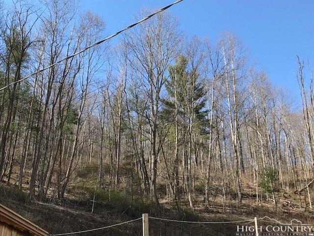 5881 Hwy 194 N Highway, Warrensville, NC 28693 (MLS #206174) :: RE/MAX Impact Realty