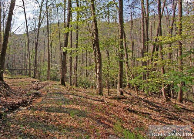 Lot 330R Twin Rivers Drive, Boone, NC 28607 (MLS #206616) :: Keller Williams Realty - Exurbia Real Estate Group