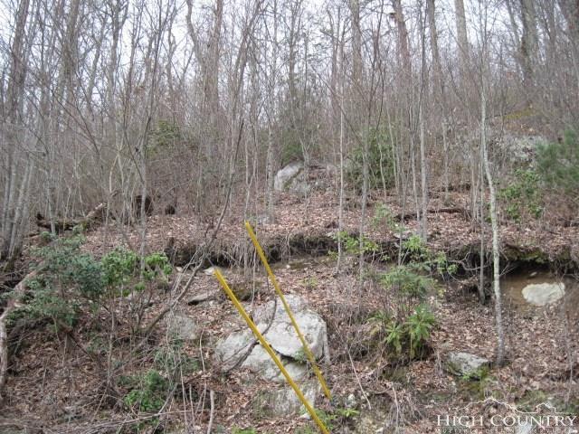 7668 Turtle Rock Road, Jonas Ridge, NC 28641 (MLS #206753) :: Keller Williams Realty - Exurbia Real Estate Group