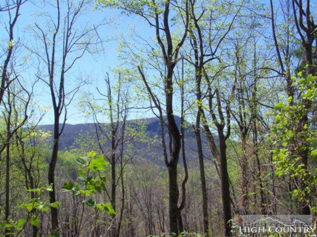 Lot 97 Buck Mountain Road, West Jefferson, NC 28694 (MLS #206827) :: Keller Williams Realty - Exurbia Real Estate Group