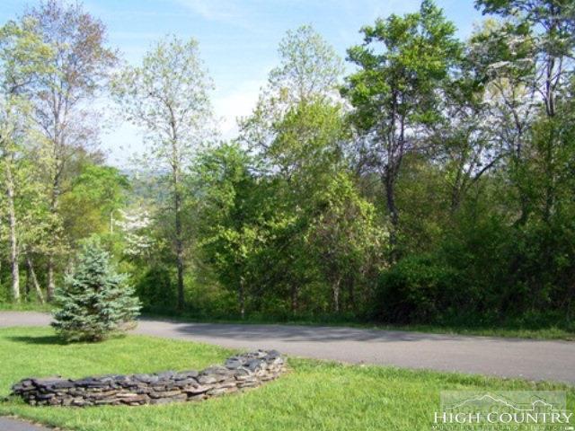 Lot 51 Crain Branch Lane, Jefferson, NC 28640 (MLS #207460) :: Keller Williams Realty - Exurbia Real Estate Group