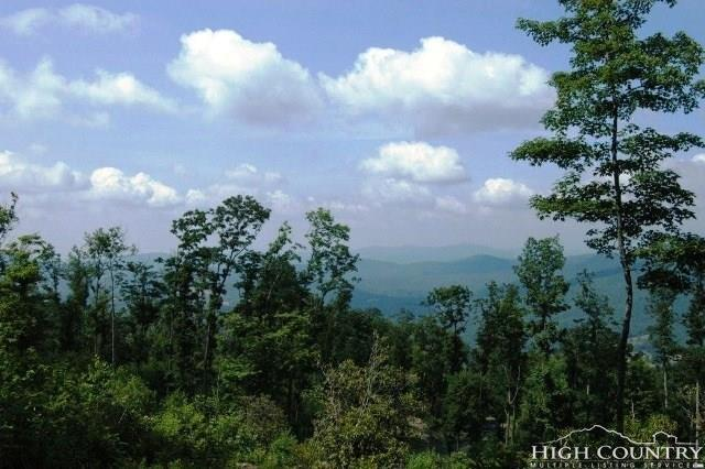 Lot  15 Mountain Laurel Parkway, Linville Falls, NC 28647 (MLS #207590) :: Keller Williams Realty - Exurbia Real Estate Group