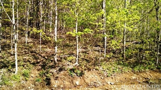 Lot #6 Pioneer Path, West Jefferson, NC 28694 (MLS #207602) :: RE/MAX Impact Realty