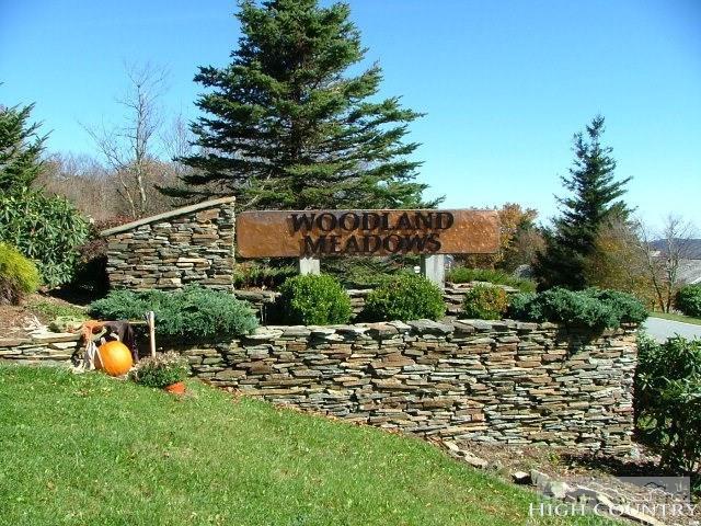 TBD Larkspur Lane, Beech Mountain, NC 28604 (MLS #207626) :: Keller Williams Realty - Exurbia Real Estate Group