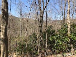 TBD Quiet Springs Road, Boone, NC 28607 (MLS #207845) :: Keller Williams Realty - Exurbia Real Estate Group
