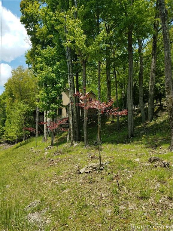 508 Saint Andrews Road, Beech Mountain, NC 28604 (MLS #207914) :: Keller Williams Realty - Exurbia Real Estate Group