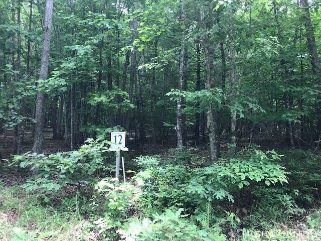 Lot 12 Tom's Knob Road, Sparta, NC 28675 (MLS #208309) :: RE/MAX Impact Realty