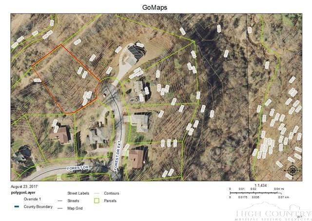 00 Forest Drive Extension, Wilkesboro, NC 28697 (MLS #208853) :: Keller Williams Realty - Exurbia Real Estate Group