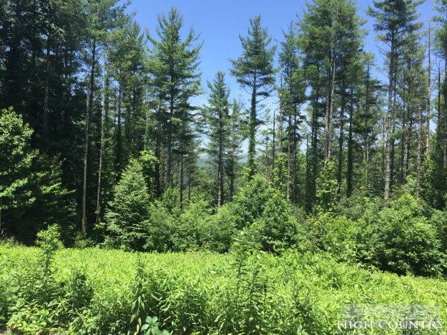 Tbd Alpine Way, Todd, NC 28684 (MLS #208892) :: Keller Williams Realty - Exurbia Real Estate Group