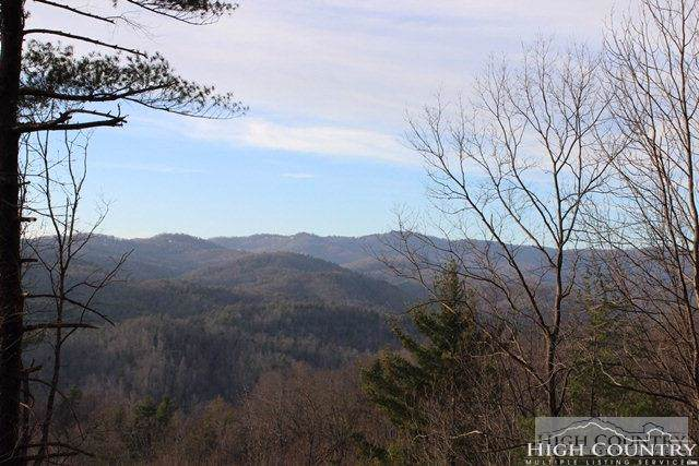 Tbd Canyon Bluff Drive, Lenoir, NC 28664 (MLS #209072) :: Keller Williams Realty - Exurbia Real Estate Group