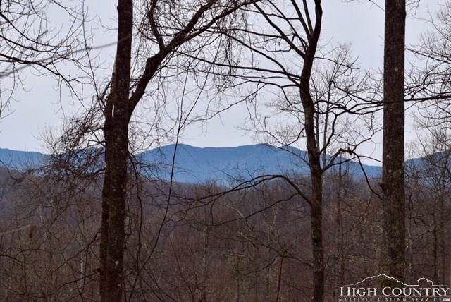 Lot 67 Rainbow Trout Drive, Spruce Pine, NC 28777 (MLS #209202) :: Keller Williams Realty - Exurbia Real Estate Group