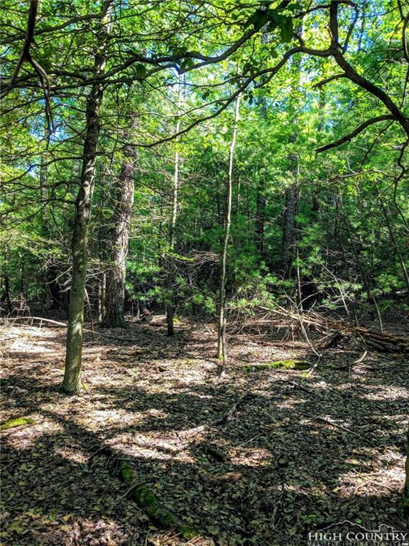 TBD Oakwood Drive, Glade Valley, NC 28627 (MLS #209269) :: Keller Williams Realty - Exurbia Real Estate Group