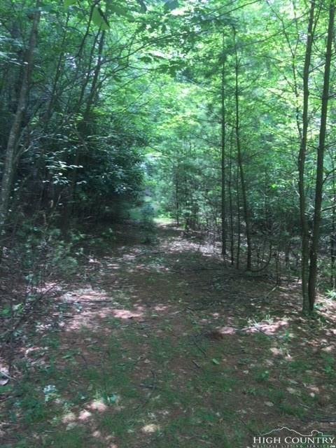Lot 381 Cardinal Drive, West Jefferson, NC 28694 (MLS #209517) :: RE/MAX Impact Realty