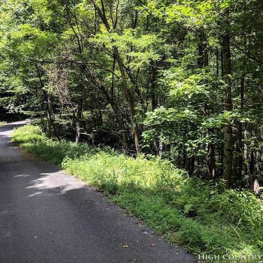 TBD Milton Brown Heirs Road, Boone, NC 28607 (MLS #209932) :: Keller Williams Realty - Exurbia Real Estate Group