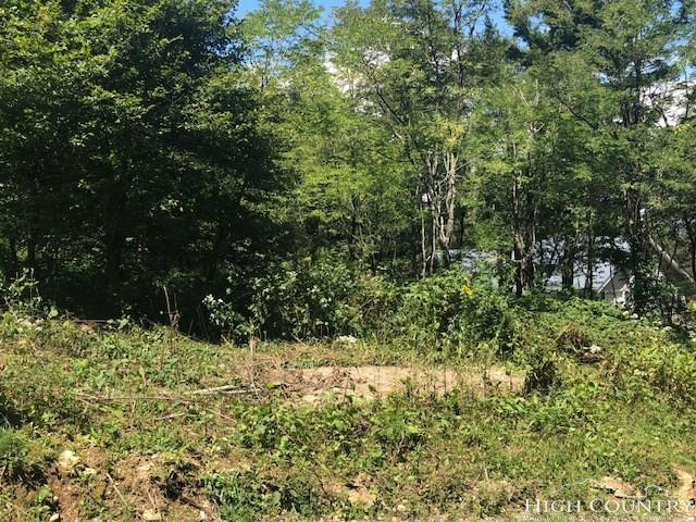Lot B-26 Fire Tower Road, Boone, NC 28607 (MLS #210407) :: RE/MAX Impact Realty